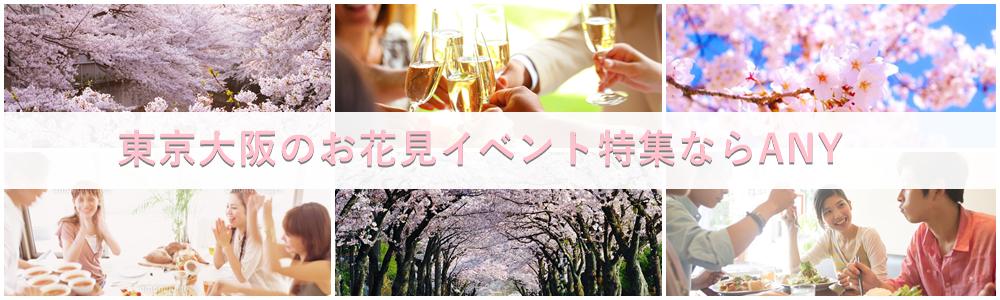 お花見イベントパーティー街コン東京大阪ならANYパーティー